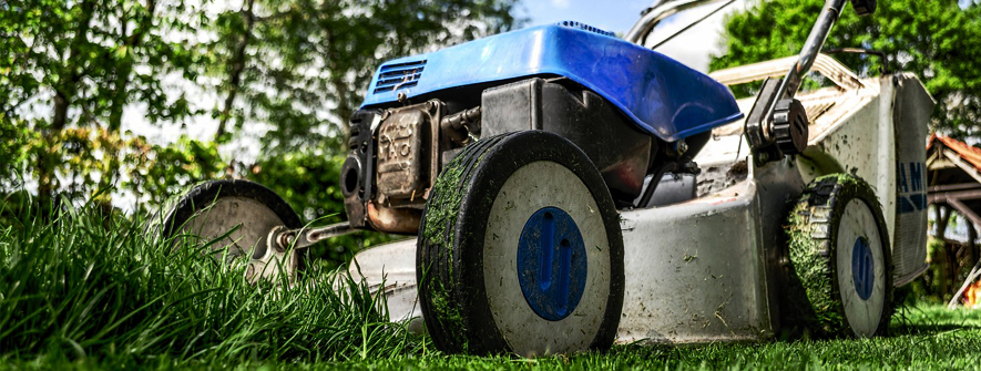 The Benefits Of Grass Cutting Services